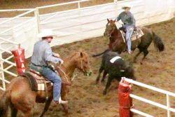 Ranchsorting02