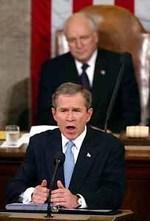 Bushstateoftheunionaa