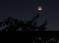Nightafrica